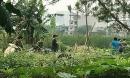 Vụ thi thể cháy xém trong bao tải ở Hà Nội: Bắt nghi phạm