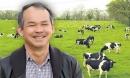 Có tiền, bầu Đức sẽ khôi phục đàn bò