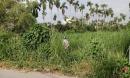 Phát hiện thi thể người đàn ông xăm trổ phân hủy mạnh trong đám cỏ