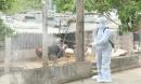 Xuất hiện ổ dịch cúm A/H1N1 trong một gia đình ở Đắk Lắk