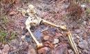 Giết người tình, chôn xác phi tang khi phát hiện có thai