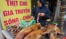 Hà Nội dự kiến cấm kinh doanh, buôn bán, giết mổ chó, mèo ở các quận từ năm 2021