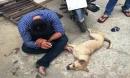 Bắt đối tượng trộm chó, 3 công an bị phơi nhiễm HIV