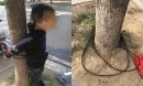 Bé trai bị trói vào cây trước cổng trường, danh tính người trói khiến ai cũng phẫn nộ