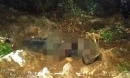 Phát hiện thi thể 1 người đàn ông mất đầu, không mặc áo trên đồi