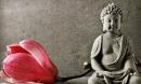 Trong đời có 7 điều cần phải 'nhẫn' để thành công và hưởng phúc