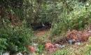 Kinh hãi phát hiện thi thể trong chiếc ô tô dưới vực sâu