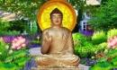 Phật dạy: Muốn ngày mai giàu sang hạnh phúc, hôm nay hãy làm ngay những việc này