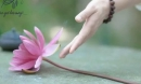 Sống ở đời đừng quá đặt nặng mọi thứ, cho được cứ cho, buông được cứ buông