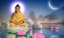Phật dạy: Trong đời có 2 điều không cầu khấn và 3 điều không thể chờ đợi