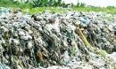 Hàng trăm xác thai nhi bỏ lẫn trong rác thải: Lãnh đạo Cà Mau nói gì?