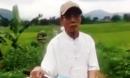 Tạm giữ hình sự nguyên Chủ tịch xã bị tố đưa bé gái 8 tuổi ra cánh đồng giở trò đồi bại