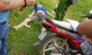 Thi thể người đàn ông tử vong bên cạnh xe máy giữa cánh đồng
