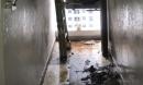 Cháy căn hộ chung cư của TNR do đun bếp gas công nghiệp: Thông tin bị bưng bít?