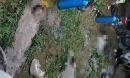 Tắm kênh, 3 chị em ruột ở Quảng Bình đuối nước thương tâm