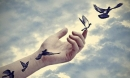 10 nguyên tắc cơ bản để bớt khờ đi và khôn ngoan hơn