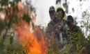 Hơn 100 người xông vào dập lửa, cứu rừng bốc cháy ở Đà Nẵng