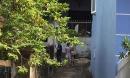 Quảng Ninh: Thai phụ nghi bị hành hung tử vong