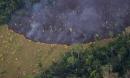 Cháy rừng Amazon - 'lá phổi' địa cầu trước nguy cơ bị bức tử