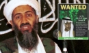 Vì sao khủng bố al-Qaeda vẫn sống khỏe 18 năm sau thảm kịch 11/9?