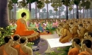 Phật dạy rằng: Trong hàng ngàn tội lỗi thì phạm vào tội này là nặng nhất, nghiệp báo rất lớn