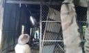 Tủ lạnh chập điện gây cháy rụi căn nhà cùng số tiền 40 triệu đồng