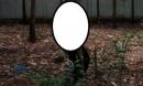Một người đàn ông chết bí ẩn trong vườn cao su