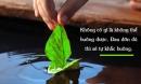 Đức Phật dạy: Muốn hạnh phúc cần bỏ 2 điều này