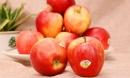 'Siêu thực phẩm' làm sạch thận, thải độc cơ thể nên ăn ngay trước Tết