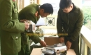 Bắt xe tải chở hàng trăm nghìn khẩu trang y tế lậu từ TP.HCM ra Hà Nội tiêu thụ