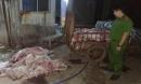 Phát hiện cơ sở mua lợn chết giá 50.000 đồng/con, xẻ thịt bán cho công nhân