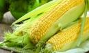 Ăn một bắp ngô vào đúng 'giờ vàng' là dinh dưỡng tăng gấp 10 lần, cơ thể thay đổi kì diệu
