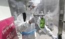 Kỷ lục 505 ca nhiễm một ngày, Hàn Quốc có 1.766 ca bệnh virus corona
