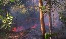 3 giờ chữa cháy rừng tràm hơn 5.000m2 nằm sát sân bay Đà Nẵng