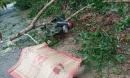 Bão số 5 khiến 23 người bị thương, 1 người đàn ông đi xe máy bị cây đè tử vong