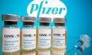 WHO ca ngợi vaccine của Pfizer, xem xét chuẩn bị phê duyệt