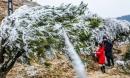 Hàng ngàn du khách bất chấp rét buốt lên đỉnh Mẫu Sơn ngắm băng tuyết
