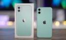 iPhone 11 giảm giá 'bay nóc', loạt điện thoại iPhone SE, iPhone XR cũng chạy đua với giá rẻ