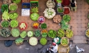Việt Nam lọt top 'điểm đến ẩm thực tốt nhất thế giới' do Lonely Planet bình chọn, nghe lời tạp chí nổi tiếng giới thiệu còn tự hào hơn