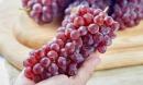 6 loại trái cây không thể thiếu trong mùa dịch, vừa giàu dinh dưỡng lại tốt cho sức khỏe
