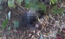 Phát hiện thi thể ở Thái Nguyên là nam giới đang phân huỷ mạnh trong bụi cây rậm rạp
