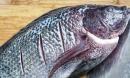 Khi đi chợ, đừng bao giờ chọn 4 loại cá này vì 'bẩn nhất chợ', không tươi ngon lại có thể rước bệnh về cho cả gia đình