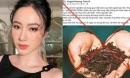 Đăng tin thất thiệt giun đất có thể chữa Covid-19, Angela Phương Trinh bị phạt 7,5 triệu đồng