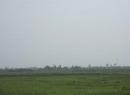 Hải Dương: Dân đua nhau bán trắng cánh đồng, xã bất lực