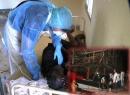 Nóng 24h: Dịch Ebola lan đến Senegal; Tàu cá Quảng Nam và ngư dân vào cảng an toàn