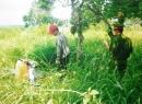 Chủ trang trại tiết lộ thông tin độc quyền về kỳ án vườn mít