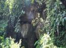 Thực hư 'dấu chân tiên' và 'hầm hơi' nước thánh ở Ma Thiên Lãnh