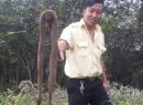 Phát hiện đối tượng lạ mặt thả hơn 100 con rắn ra khu dân cư