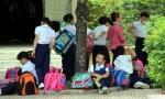 Hơn 1.000 trẻ bị đánh cắp 'giấc mơ trưa'
