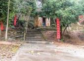 giai-ma-nhung-bi-an-ve-ngoi-lang-chet-tre-ky-2-duoi-thu-tu-xay-lai-dinh-lang-164336.html
